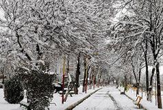 مدارس قزوین در نوبت بعدازظهر یکشنبه هم تعطیل شد
