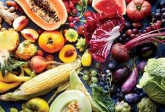 امروز قیمت میوه در میدان بزرگ میوه و تره بار تبریز چند است؟