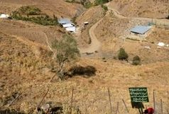 آزادسازی بالغ بر ۷ هزار متر مربع از اراضی ملی منطقه حفاظت شده البرز مرکزی