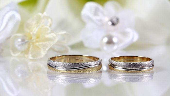 اختصاص ۱۵۰ میلیون تومان اعتبار به زوجهای نیازمند خراسان شمالی
