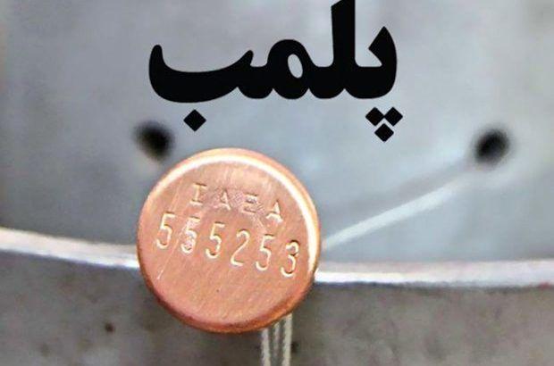 پلمب ۲ هزار و ۳۲۱ واحد صنفی متخلف در استان کرمان