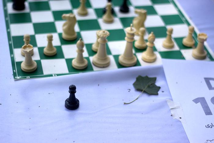 نمایندگان شطرنج ایران به پیروزی رسیدند