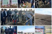 کلنگ زنی و بهره برداری از پروژه های کشاورزی  بمناسبت دهه فجر در شرکت ملی پارس